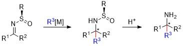 Organic-Reactions